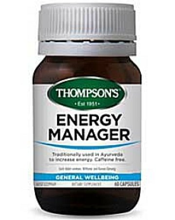 Thompson`s Energy Manager