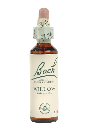 Willow - Bach Flower Remedies