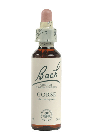 Gorse - Bach Flower Remedies