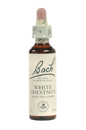 White Chestnut - Bach Flower Remedies