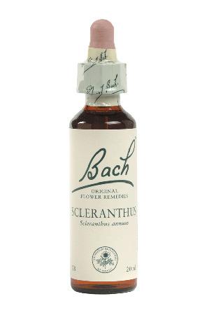 Scleranthus - Bach Flower Remedies
