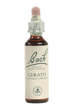 Cerato - Bach Flower Remedies