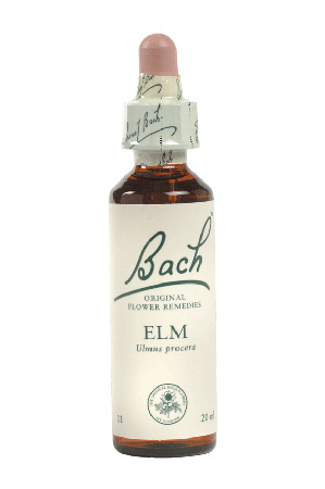 Elm - Bach Flower Remedies