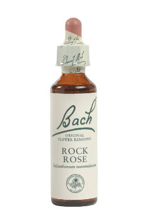 Rock Rose - Bach Flower Remedies