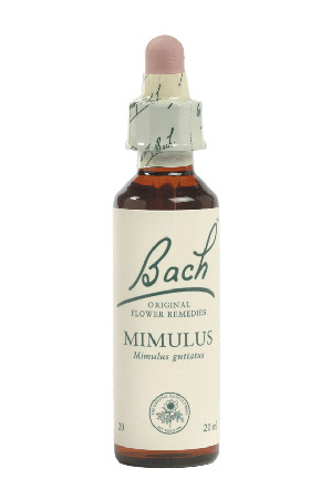 Mimulus - Bach Flower Remedies