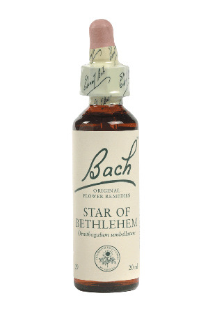 Star Of Bethlehem - Bach Flower Remedies