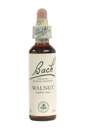 Walnut - Bach Flower Remedies